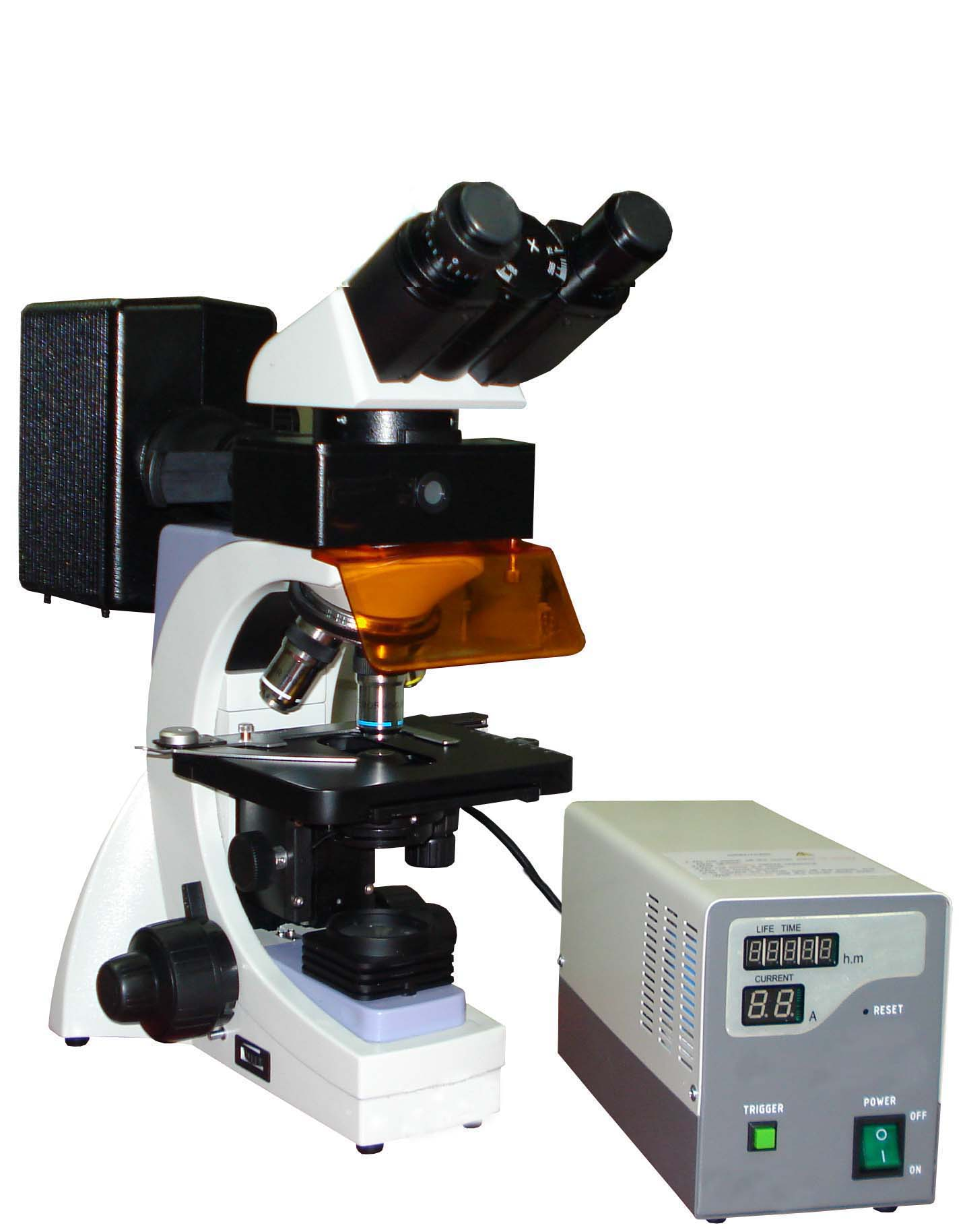 Fluorescence Microsopy Fluorescent Microscope Manufacturer Supplier Ac Dc Low Voltage Power Supply In Ambala Cantt Haryana India Hl 23 With Flm 202